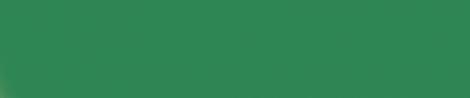 """国・地域によって異なる""""色""""の嗜好性Korea favorit color :#2E8B57"""