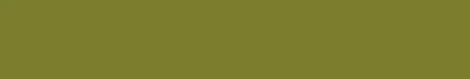 """国・地域によって異なる""""色""""の嗜好性Taiwan favorit color :#808000"""